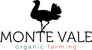 Monte Vale